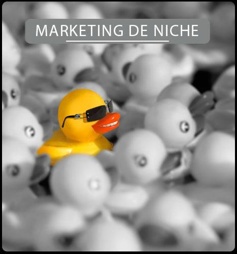 Services de Marketing de Niche